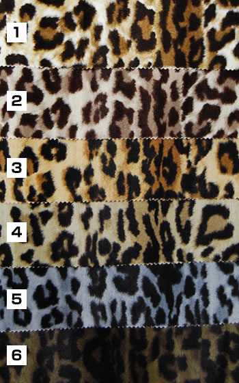 Animal Print Color